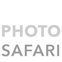 Chile Photo Safari